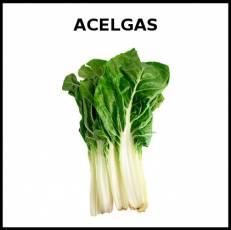 ACELGAS - Foto