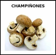 CHAMPIÑONES - Foto