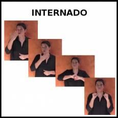 INTERNADO - Signo