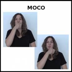 MOCO - Signo