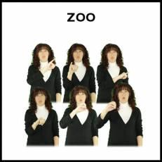 ZOO - Signo