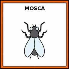 MOSCA - Pictograma (color)