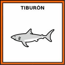 TIBURÓN (ANIMAL) - Pictograma (color)