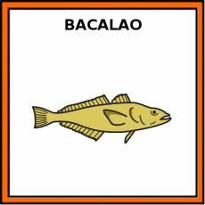 BACALAO (ANIMAL) - Pictograma (color)