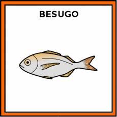 BESUGO (ANIMAL) - Pictograma (color)