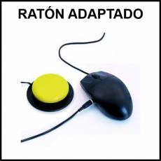 RATÓN ADAPTADO - Foto