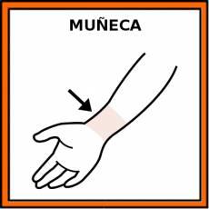 MUÑECA (ARTICULACIÓN) - Pictograma (color)