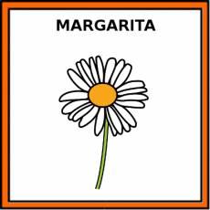 MARGARITA - Pictograma (color)
