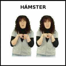 HÁMSTER - Signo