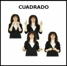 CUADRADO - Signo