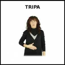 TRIPA - Signo