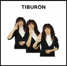 TIBURÓN (ANIMAL) - Signo