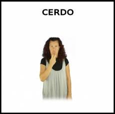 CERDO - Signo