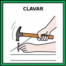 CLAVAR - Pictograma (color)