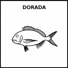 DORADA (ANIMAL) - Pictograma (blanco y negro)