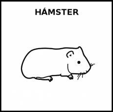 HÁMSTER - Pictograma (blanco y negro)