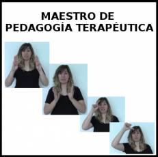 MAESTRO DE PEDAGOGÍA TERAPÉUTICA - Signo alternativo
