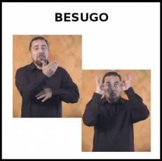 BESUGO (ANIMAL) - Signo