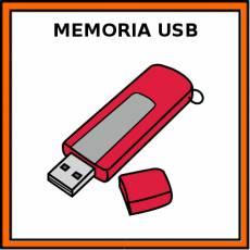 MEMORIA USB - Pictograma (color)