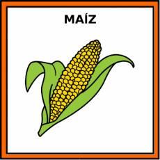 MAÍZ - Pictograma (color)