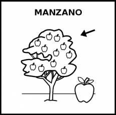MANZANO - Pictograma (blanco y negro)