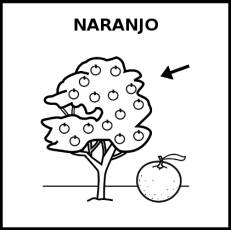 NARANJO - Pictograma (blanco y negro)