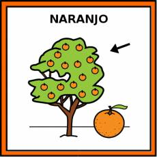 NARANJO - Pictograma (color)