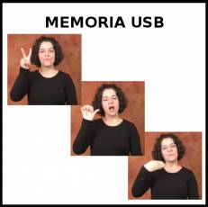 MEMORIA USB - Signo