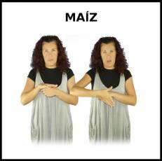 MAÍZ - Signo