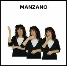 MANZANO - Signo