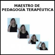 MAESTRO DE PEDAGOGÍA TERAPÉUTICA - Signo
