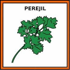 PEREJIL - Pictograma (color)