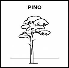 PINO - Pictograma (blanco y negro)