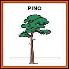 PINO - Pictograma (color)