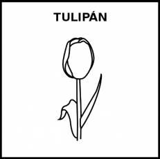 TULIPÁN - Pictograma (blanco y negro)