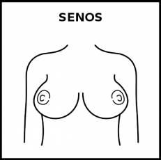 SENOS - Pictograma (blanco y negro)