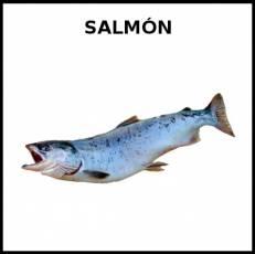 SALMÓN (ANIMAL) - Foto