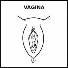 VAGINA - Pictograma (blanco y negro)