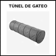 TÚNEL DE GATEO - Pictograma (blanco y negro)