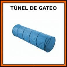 TÚNEL DE GATEO - Pictograma (color)