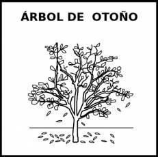 ÁRBOL DE OTOÑO - Pictograma (blanco y negro)