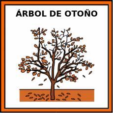 ÁRBOL DE OTOÑO - Pictograma (color)