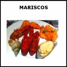 MARISCOS - Foto