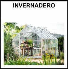 INVERNADERO - Foto