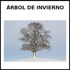 ÁRBOL DE INVIERNO - Foto
