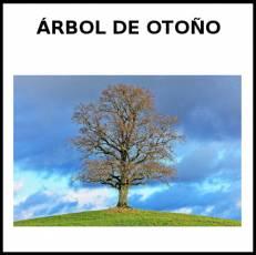 ÁRBOL DE OTOÑO - Foto