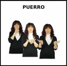 PUERRO - Signo