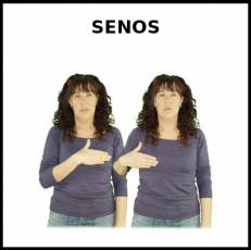 SENOS - Signo