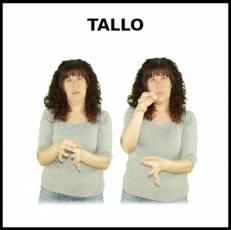 TALLO - Signo