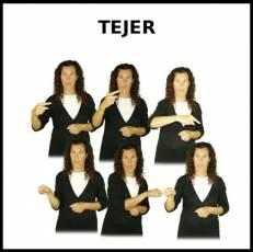 TEJER - Signo